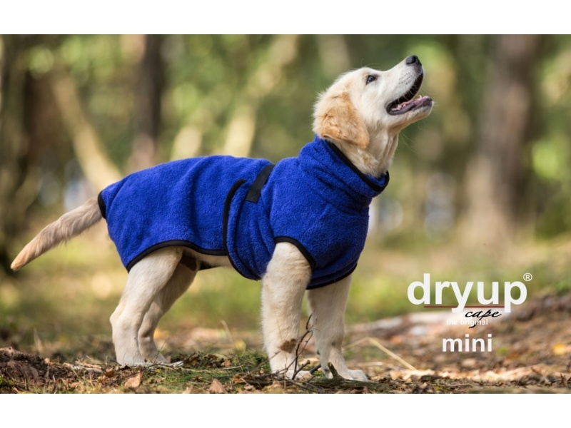 Actionfactory Dryup Cape Mini - Blueberry
